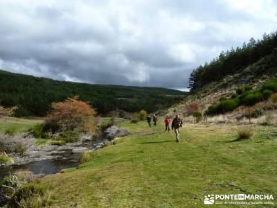 Hayedo de Tejera Negra [Serie Clásica];pantalon senderismo sendero del valle